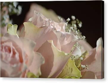 Beauty Up Close Canvas Print