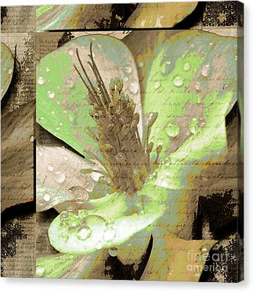Beauty X Canvas Print by Yanni Theodorou