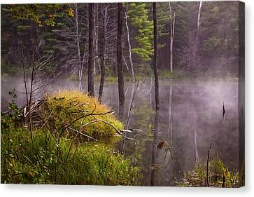 Canvas Print featuring the photograph Beaver Lodge by Tom Singleton