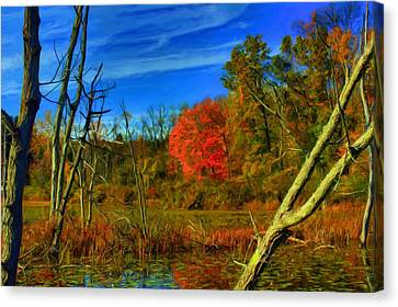 Beaver Marsh In October Canvas Print by Dennis Lundell