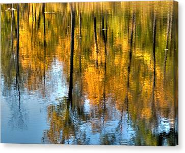 Canada Canvas Print - Beaver Pond Reflections 2 by Rob Huntley
