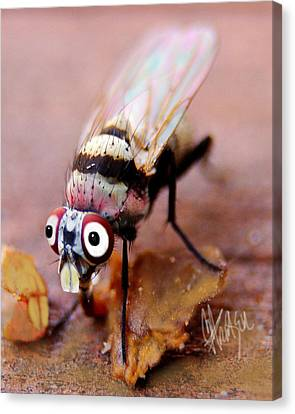 Canvas Print featuring the photograph Beaver Tooth Fly by Chris Fraser