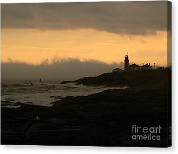 Beavertail-after The Storm Canvas Print by Butch Lombardi