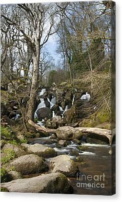 Becky Falls Dartmoor Canvas Print