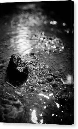 Spiritual Being Canvas Print - Becoming The Stream by Jessica Brawley