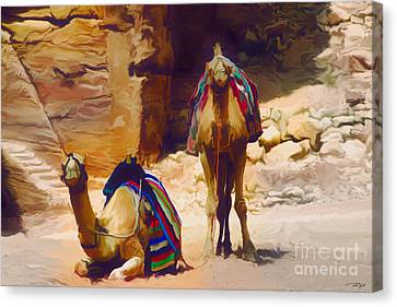 Bedu Camels On The Silk Road Canvas Print by Ted Guhl