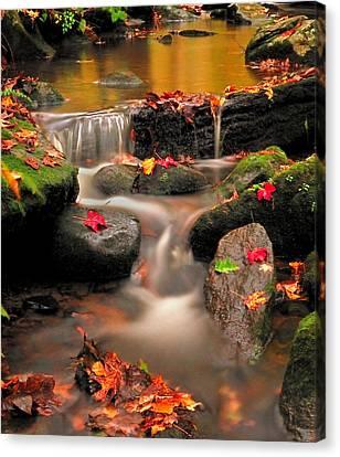 Gentle Cascades Of Autumn  Canvas Print by Thomas Schoeller