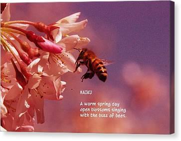 Bee Haiku Canvas Print by Jeff Swan