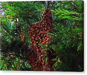 Bee Swarm Canvas Print by Steve Battle