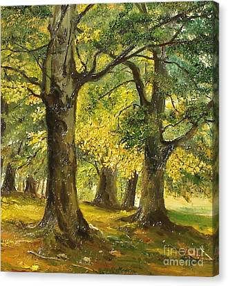 Beeches In The Park Canvas Print by Sorin Apostolescu