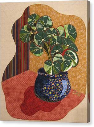 Beefsteak Begonia Canvas Print by Lynda K Boardman