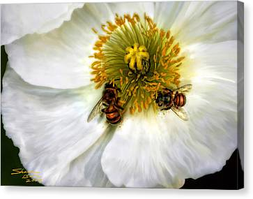 Bees On A Flower Canvas Print by Sharon Beth