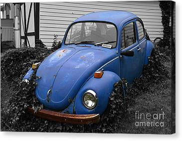 Beetle Garden Canvas Print by Angela DeFrias