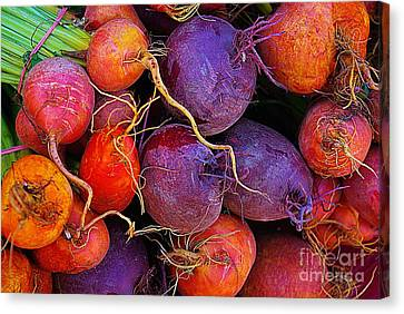 Beets Me  Canvas Print by John S