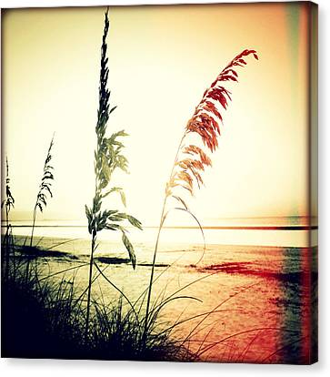 Before Day II Sunset Canvas Print by Chris Andruskiewicz