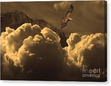 Canvas Print featuring the photograph Before Memory . I Have Soared With The Hawk by Wingsdomain Art and Photography