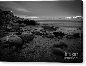Before The Sun Canvas Print by Sue OConnor