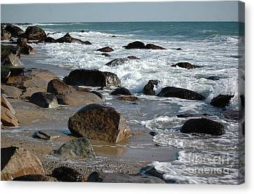 Canvas Print featuring the photograph Beginnings by Christiane Hellner-OBrien