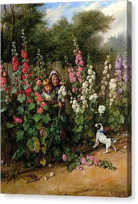 Behind The Hollyhocks Canvas Print by Charles Hunt
