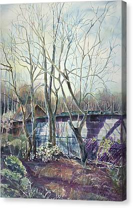 Behind The Shed Canvas Print by Janet Felts