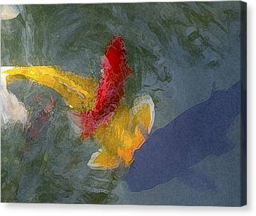 Being Koi 2 Canvas Print by Rich Franco
