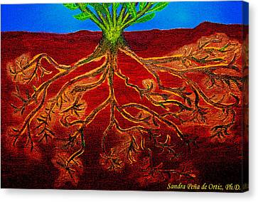 Being Rooted And Grounded In My Good Soil Canvas Print by Sandra Pena de Ortiz