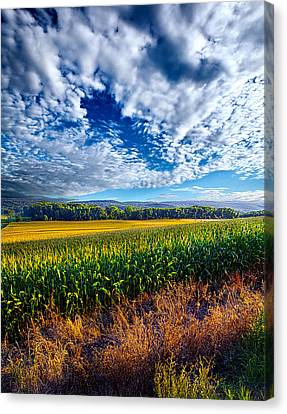 Being There Canvas Print by Phil Koch