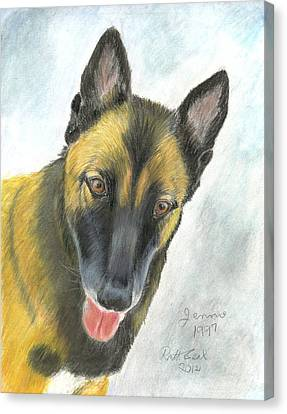 Belgian Malinois Canvas Print by Ruth Seal
