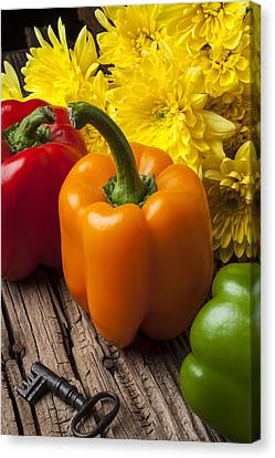 Nutrients Canvas Print - Bell Peppers And Poms by Garry Gay