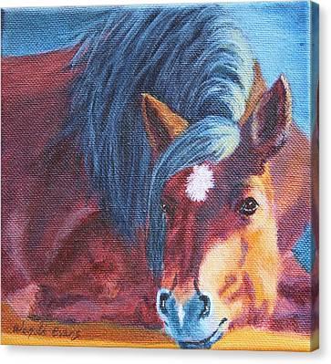 Forelock Canvas Print - Bellas Daydream by Wendi Curtis