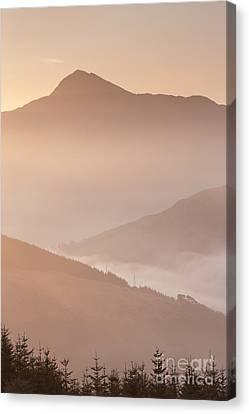 Ben Lomond Dawn Canvas Print by Rod McLean