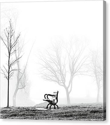 Bench Canvas Print by Brian Carson