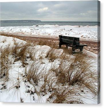 Bench In Winter Canvas Print