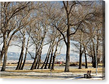 Canvas Print featuring the photograph Bench With A View by Sue Smith