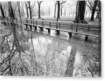Canvas Print featuring the photograph Benches Reflection Poets Walk by Dave Beckerman