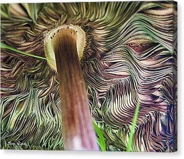 Beneath A Mushroom  Cc Canvas Print