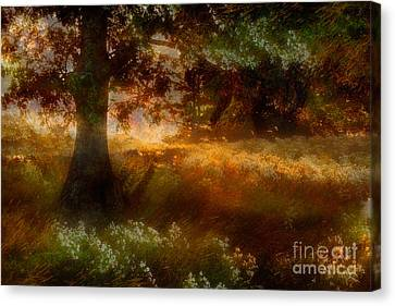 Beneath The Giants - A Tranquil Moments Landscape Canvas Print