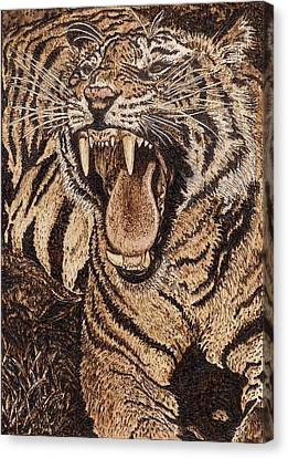 Bengal Tiger Canvas Print by Vera White