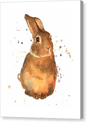 Benjamin Bunny Canvas Print by Alison Fennell