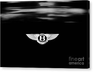 Bentley Continental Gt  Canvas Print by Tim Gainey
