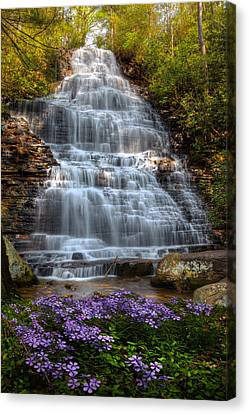 Benton Canvas Print - Benton Falls In Spring by Debra and Dave Vanderlaan