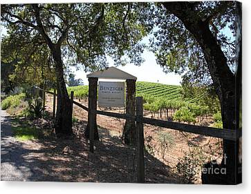 Benziger Winery In The Sonoma California Wine Country 5d24592 Canvas Print by Wingsdomain Art and Photography