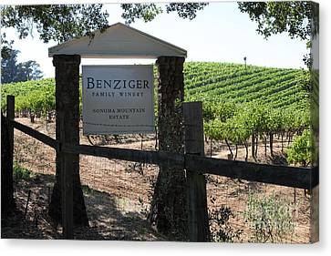Benziger Winery In The Sonoma California Wine Country 5d24593 Canvas Print by Wingsdomain Art and Photography