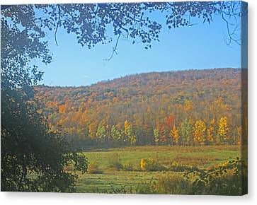 Berkshires Colors  Canvas Print by Todd Breitling