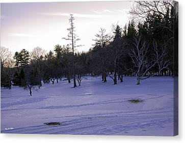 Berkshires Winter 5 - Massachusetts Canvas Print by Madeline Ellis