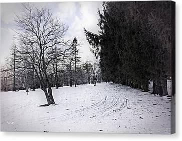 Berkshires Winter 9 - Massachusetts Canvas Print by Madeline Ellis