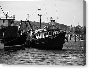 Bermagui Boats Canvas Print