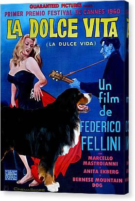 Bernese Mountain Dog Art Canvas Print - La Dolce Vita Movie Poster Canvas Print