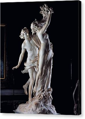 Bernini Gian Lorenzo, Apollo Canvas Print by Everett