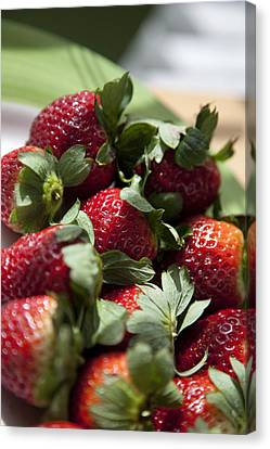 Berries In The Kitchen Canvas Print by Greg Kopriva